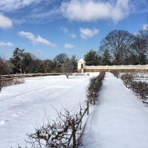 lower snow