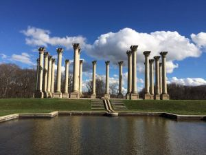 columns view